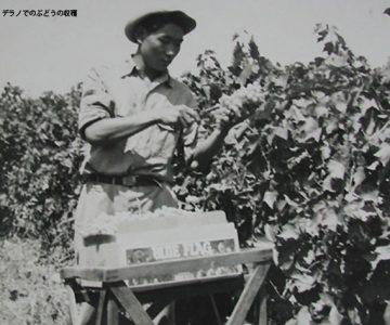 【人物】難民として米国移住した日本人たち (2)
